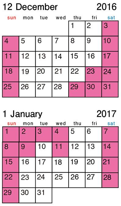 カレンダー_2016-12-2017-1.jpg