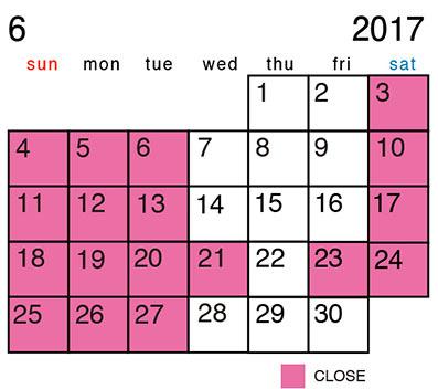 カレンダー_2017-6.jpg