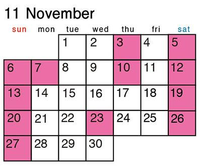 カレンダー_2016-11.jpg